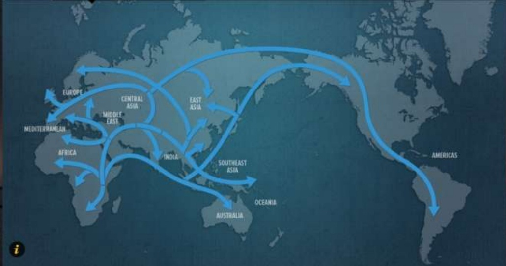 human migration essay Essay on globalization what exactly is globalization simply put, globalization means the integration of national economies into the international economy through trade, foreign direct investment, capital flows, migration, and the spread of technology.